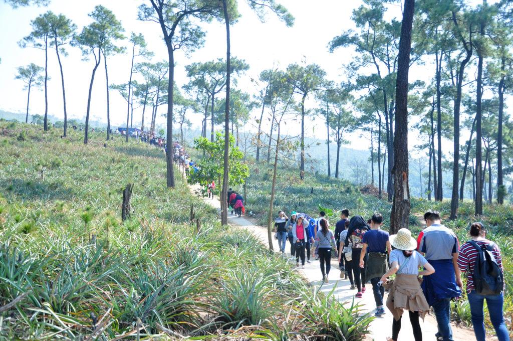 Hành trình tiên cảnh lên chùa Lôi Âm