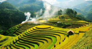 Ruộng bậc thang Mù Cang Chải - du lịch Yên Bái