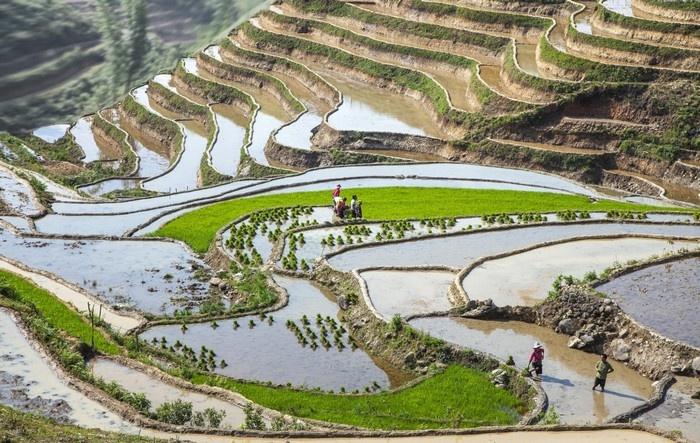 Vẻ đẹp Tả Van mùa nước đổ trong lòng thung lũng Sapa