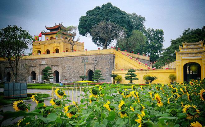 Hoàng thành Thăng Long mang một màu vàng tươi mới