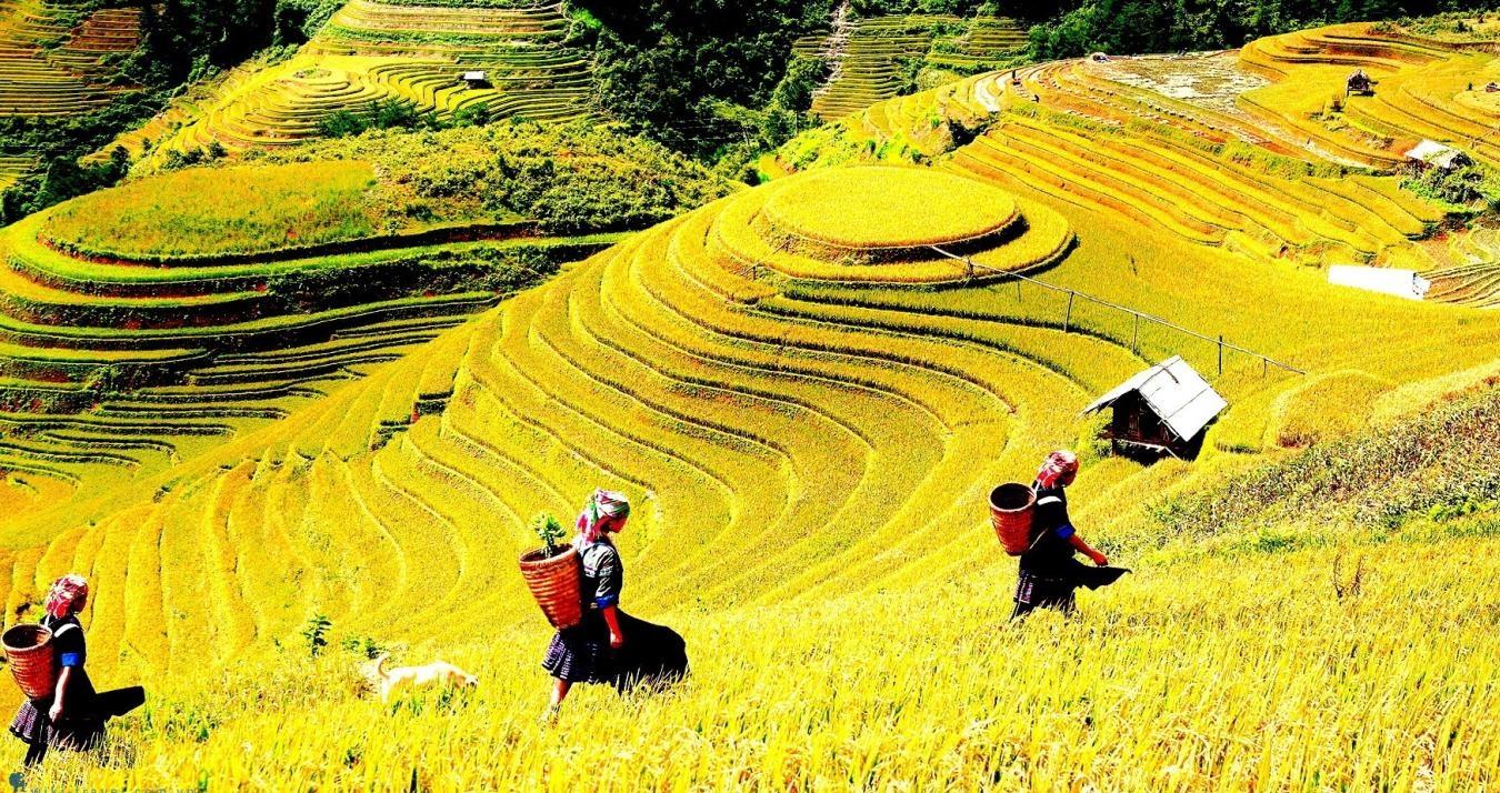 Xã Tú Lệ địa điểm du lịch nổi tiếng Yên Bái