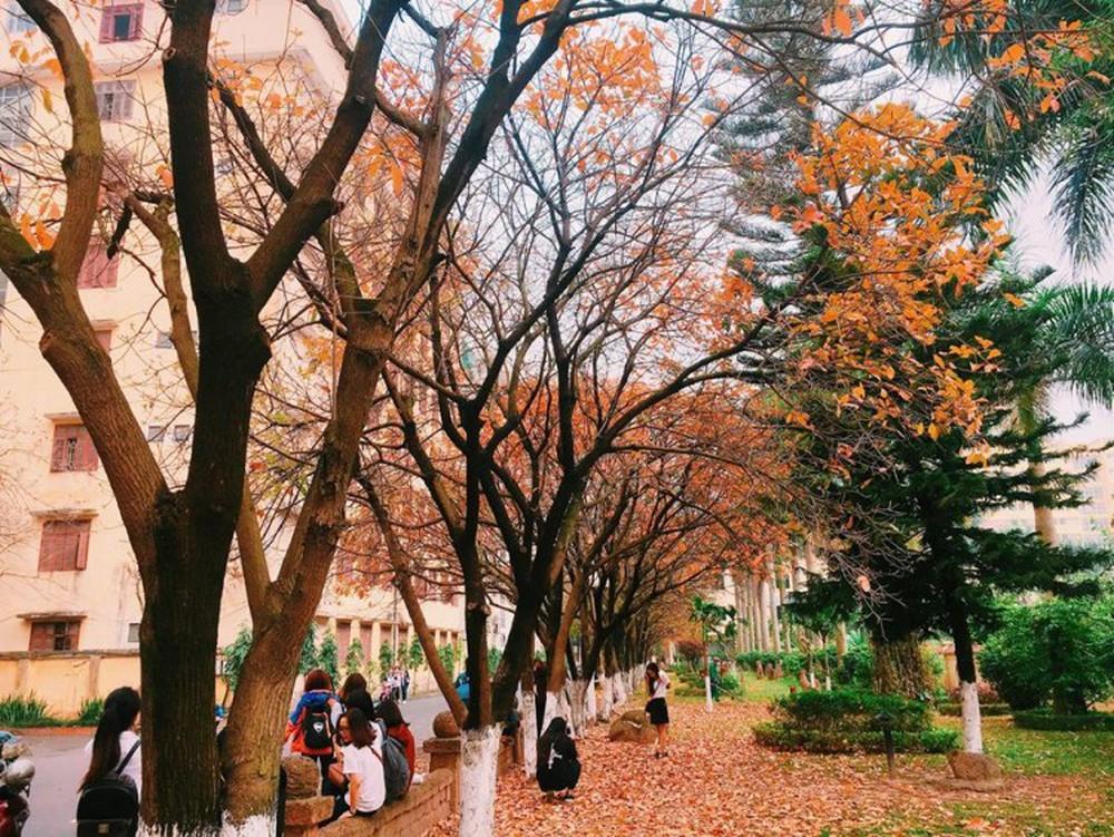Có được một con đường tình yêu đẹp hết nấc ở trường đại học Sư Phạm