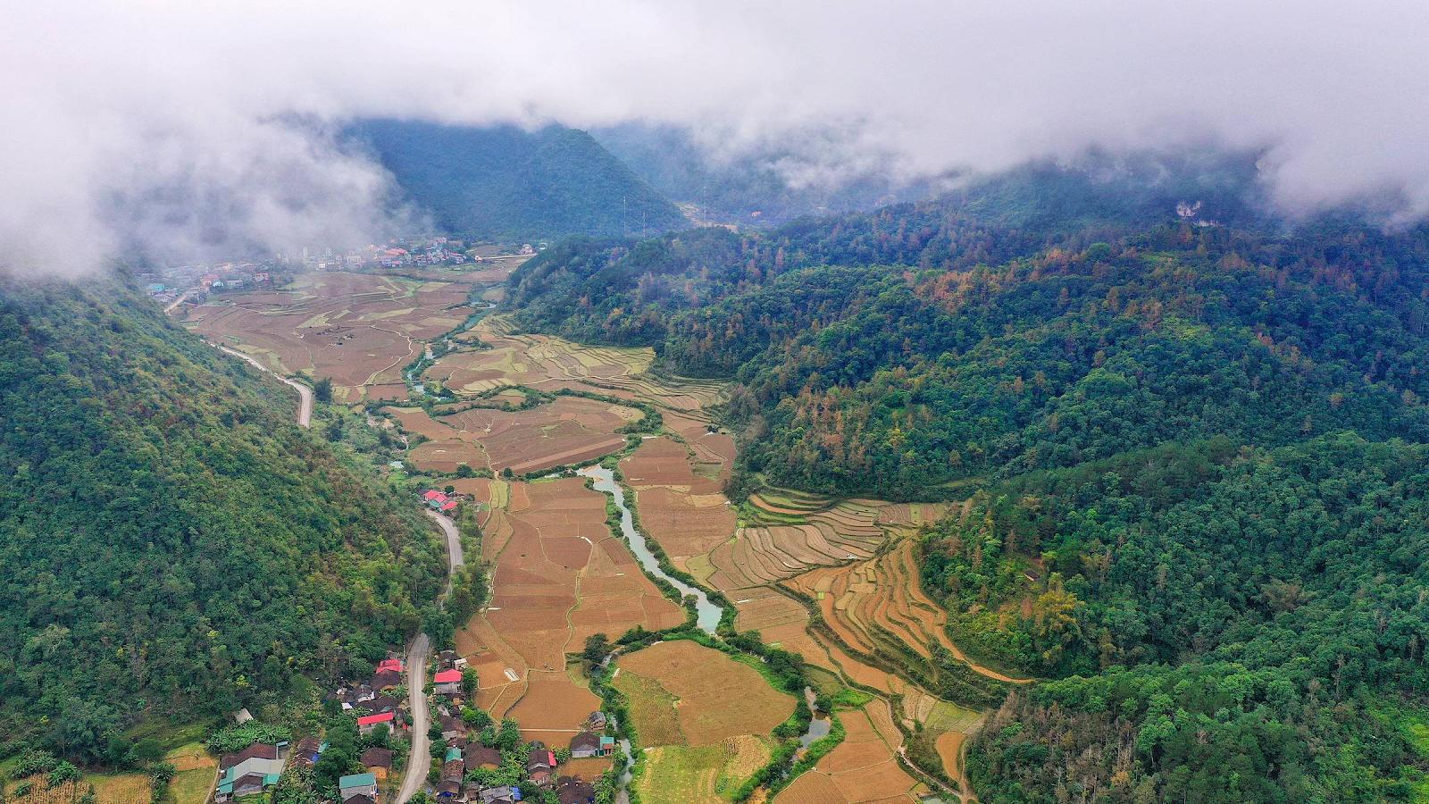Những rừng cây ở Cao Bằng đang dần thay lá