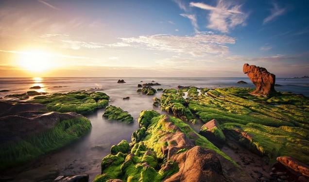 Mùa rêu đá Cổ Thạch đẹp đến nghẹt thở